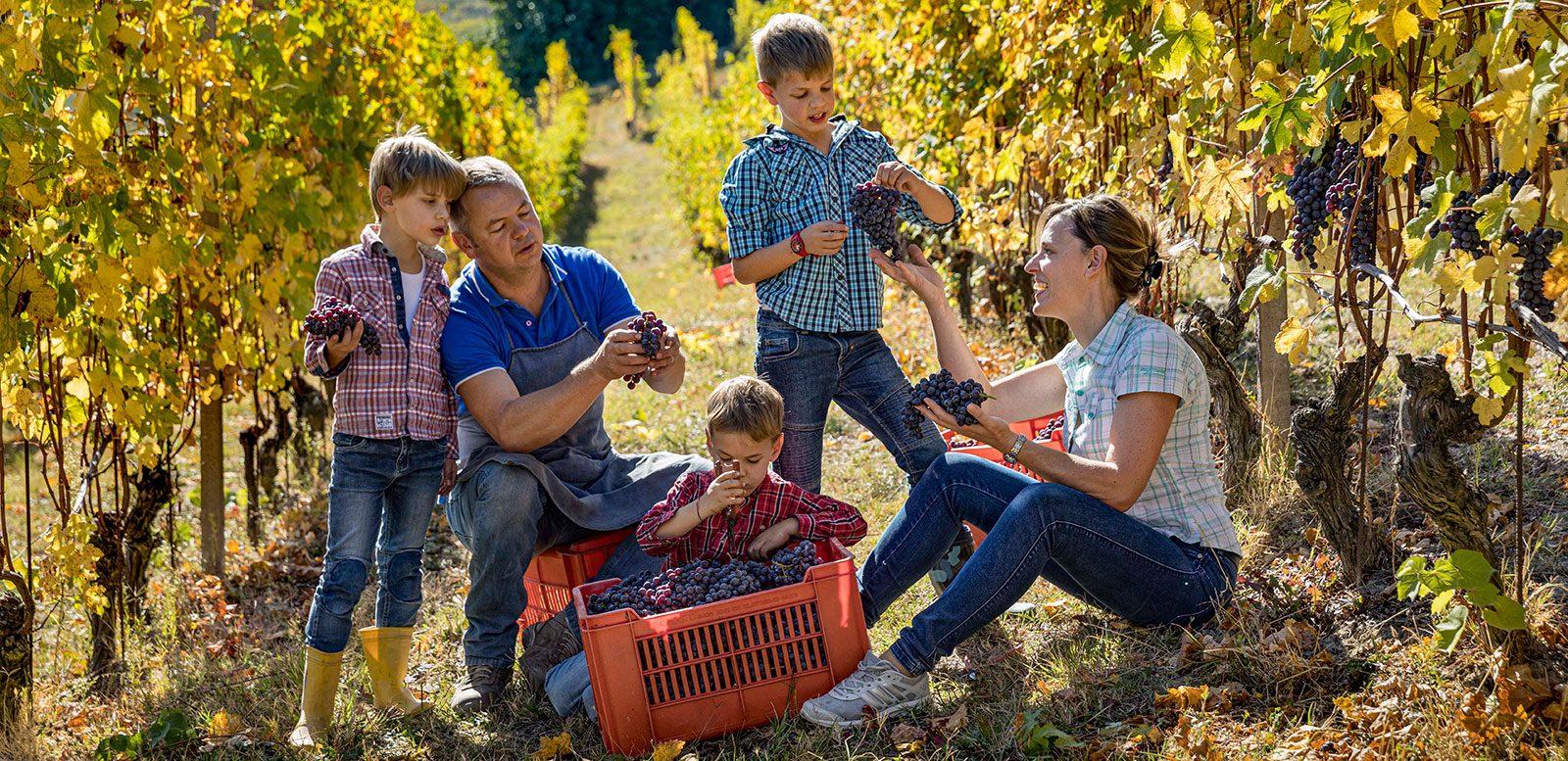 Ciabot Berton, La Morra - Una tradizione di famiglia