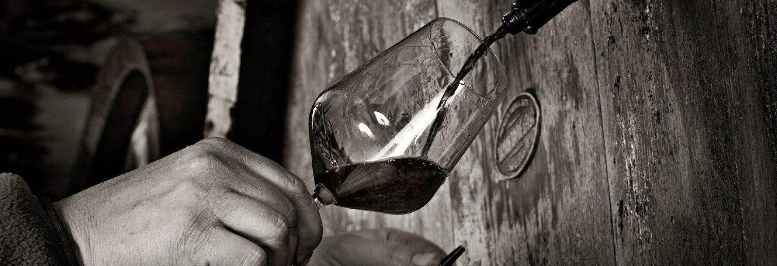 Visite in cantina e degustazione vini - Ciabot Berton - La Morra